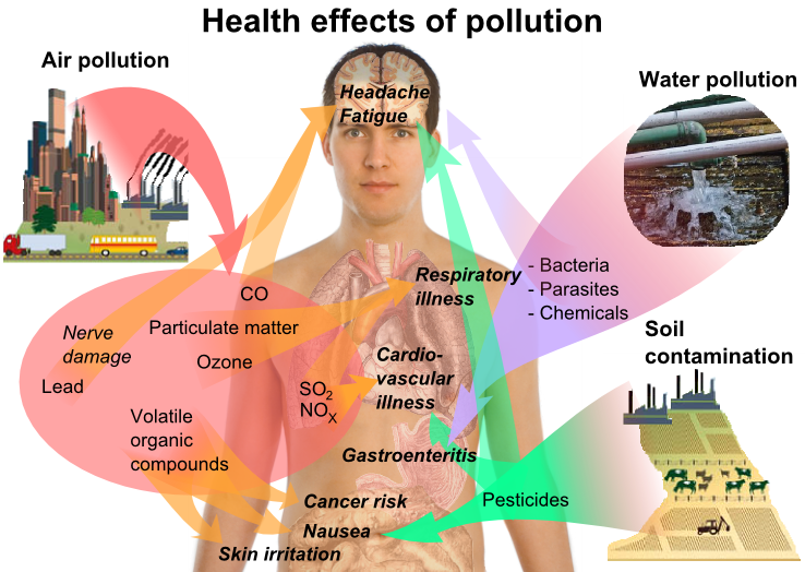 Helath effects of pollution